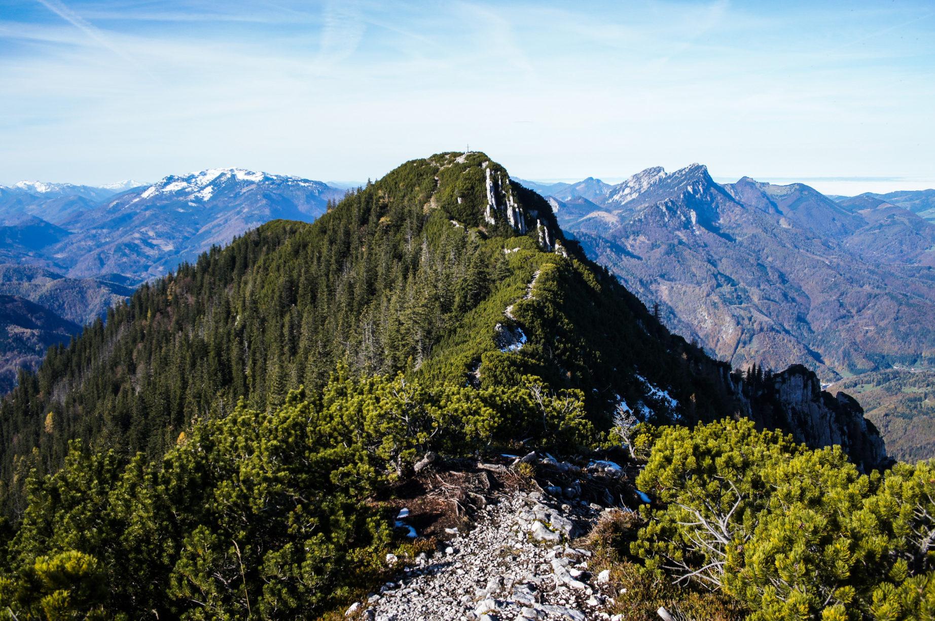 Ganz hinten kann man das Gipfelkreuz vom Spering schon sehen.