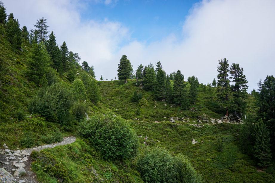 adlerweg-etappe13-4