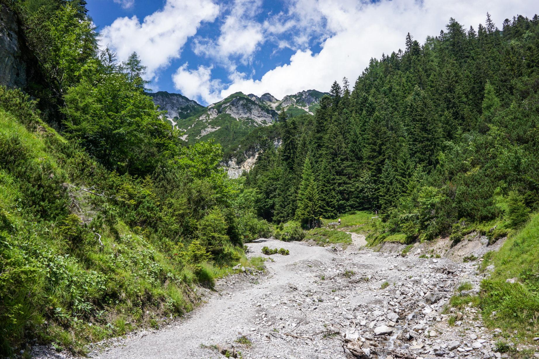 adlerweg-etappe14-4