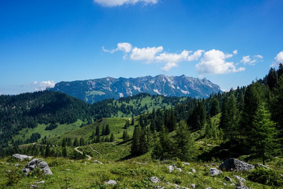 Im Vordergrund die sanften Almwiesen der Steinbergalm. Im Hintergrund der Zahme Kaiser.