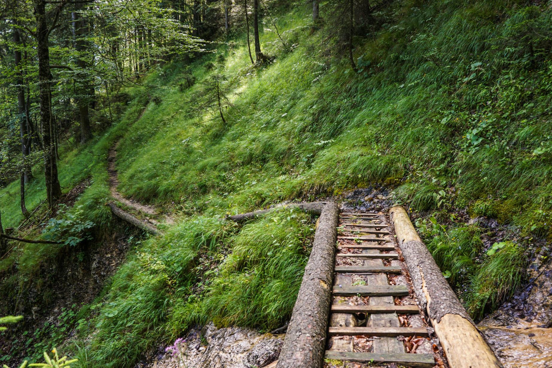 adlerweg-etappe6-4