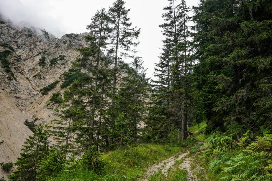 adlerweg-etappe15-15